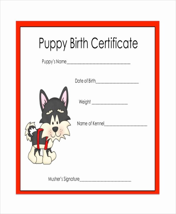 20 Dog Birth Certificate Template Free ™  Dannybarrantes Pertaining To Printable Dog Birth Certificate Template Editable