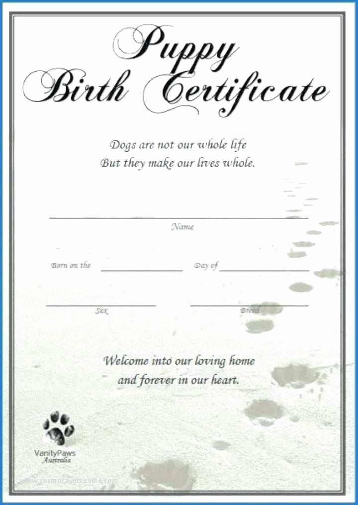20 Dog Birth Certificate Template ™ In 2020  Birth pertaining to Pet Birth Certificate Templates Fillable
