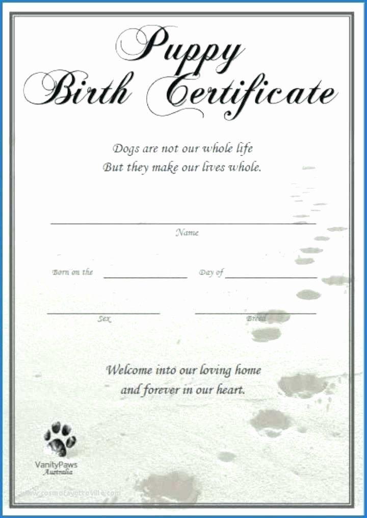 20 Dog Birth Certificate Template ™ In 2020  Birth regarding Awesome Pet Birth Certificate Template