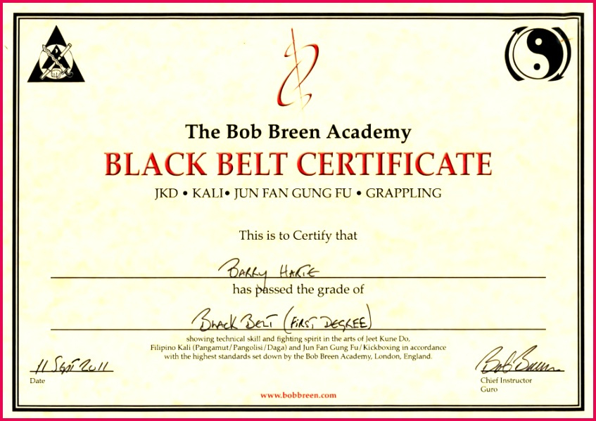 3 Karate Grading Certificate Templates 75888  Fabtemplatez with Karate Certificate Template