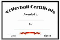 30 Free Printable Baseball Certificates In 2020  Netball throughout Printable Netball Certificate
