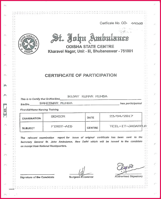 4 Perfect Attendance Certificate Template Word 80753 with regard to Amazing Fire Extinguisher Training Certificate Template Free