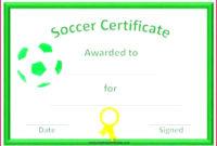6 Baseball Mvp Certificate Template 25758  Fabtemplatez in Mvp Certificate Template