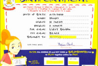 6 Creative Birth Certificate Template  Sampletemplatess inside Awesome Stuffed Animal Birth Certificate Template 7 Ideas