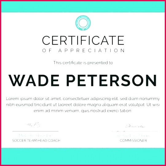 6 Free Certificate Templates For Cheerleading 85966 intended for Free Teamwork Certificate Templates