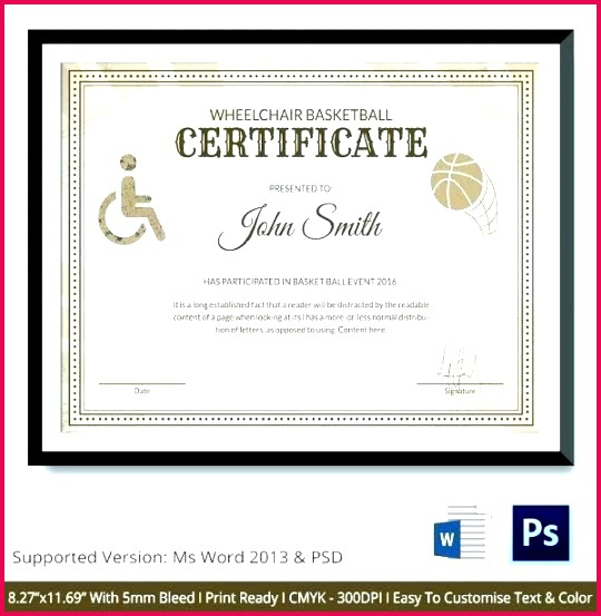 7 Sports Certificate Templates Netball 73504  Fabtemplatez throughout Free Sports Award Certificate Template Word