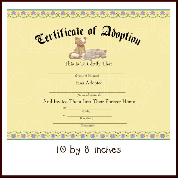 77 Best Teddy Bears Images On Pinterest  Adoption for Amazing Teddy Bear Birth Certificate Templates Free