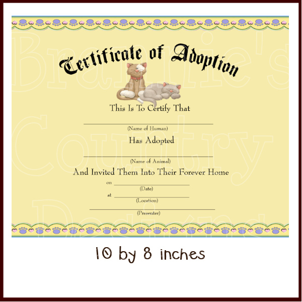 Cat Adoption Certificate Dis 600×600 Pixels  Kid intended for Printable Stuffed Animal Birth Certificate Templates
