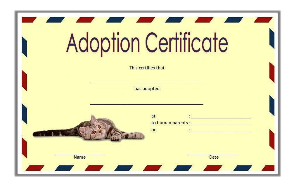 Cat Adoption Certificate Template Free 2Nd Idea In 2020 for Pet Adoption Certificate Template