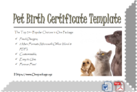 Cat Birth Certificate Free Printable Top 12 Sweet Concepts throughout Printable Certificate For Baking 7 Extraordinary Concepts