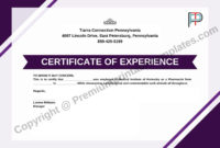 Certificate Of Experience Template Editable  Pdf for Certificate Of Experience Template