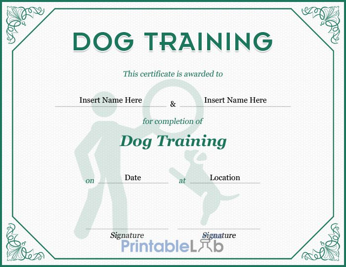 Dog Training Certificate Template In Silver William And with regard to Dog Obedience Certificate Template