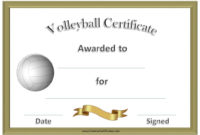 Free Volleyball Certificate Templates  Customize Online intended for Best Volleyball Mvp Certificate Templates