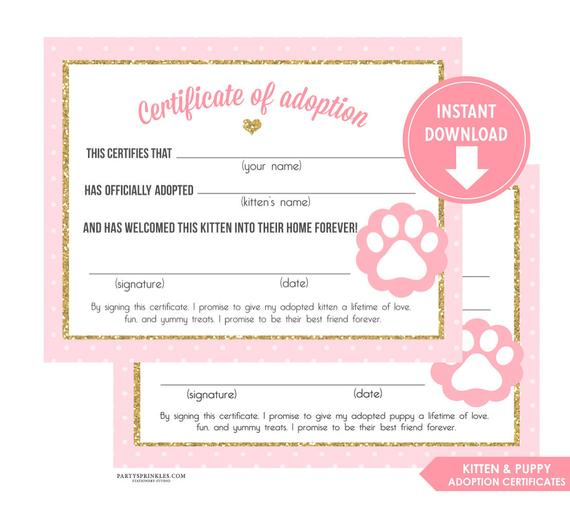 Kitten Adoption Certificate  The W Guide with Cat Birth Certificate Free Printable