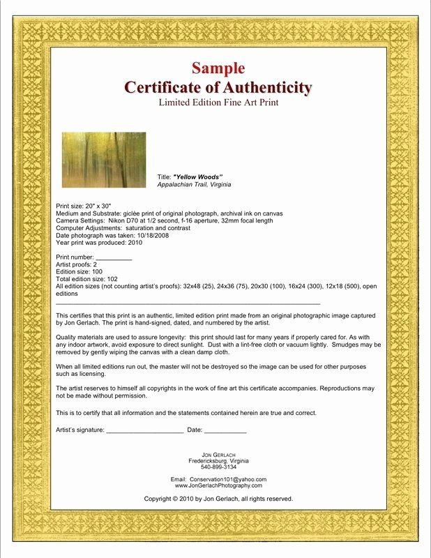 Letter Of Authenticity Template Fresh Certificate pertaining to Printable Photography Certificate Of Authenticity Template