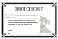 Pet Adoption Certificate Editable Templates in Awesome Cat Adoption Certificate Template