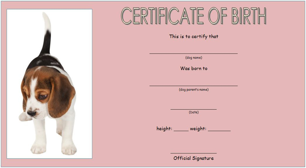 Puppy Birth Certificate Free Printable 2Nd Design In throughout Puppy Birth Certificate Template