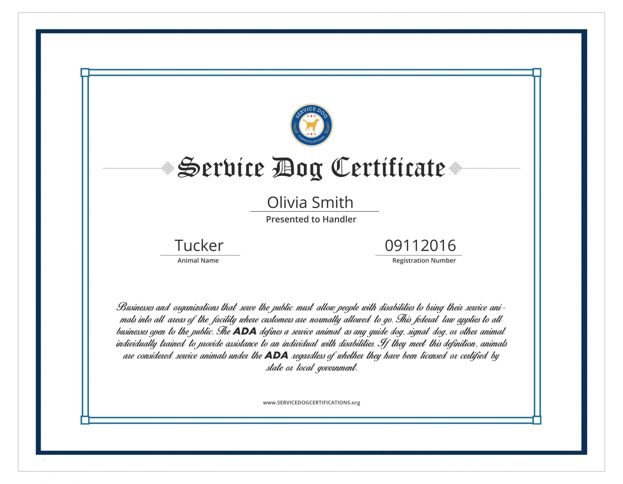 Service Dog Certificate Template  Addictionary pertaining to Best Dog Training Certificate Template