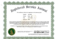 Service Dog Certificate Template Frightening Ideas with Walking Certificate Templates