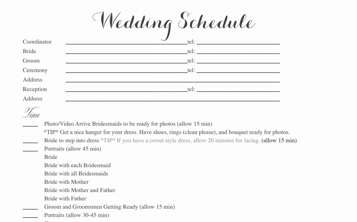 Wedding Weekend Itinerary Template Free New Free Wedding within Wedding Reception Itinerary Template